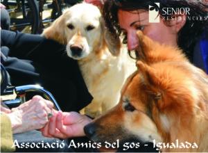 AmicsdelGos-Postal2